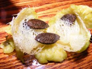 семена эхиноцистиса