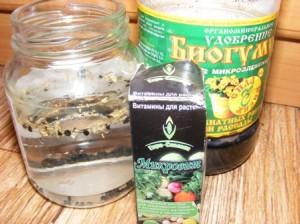 подготовка семян к посевам