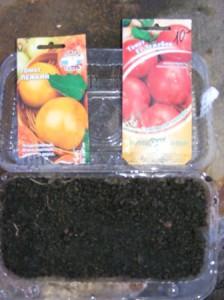 сажаем рассаду томатов
