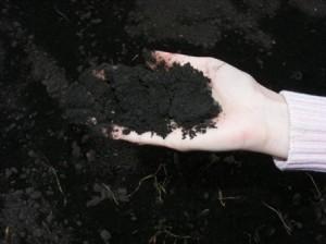 определение спелости почвы